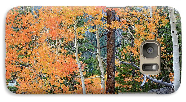 Twisted Pine Galaxy S7 Case by David Chandler