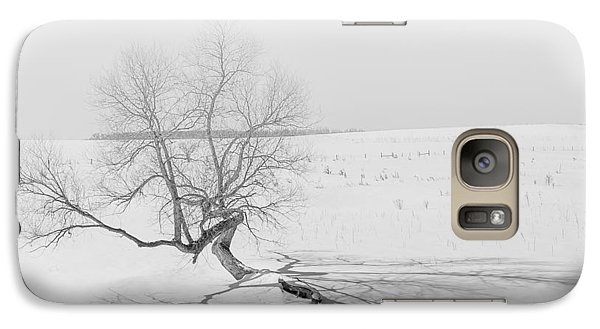 Galaxy Case featuring the photograph Twisted Tree by Dan Traun
