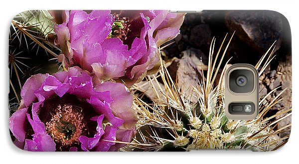 Galaxy Case featuring the photograph Two Fucshia Blossoms  by Phyllis Denton
