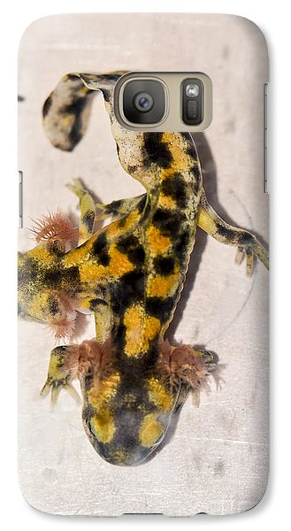 Two-headed Near Eastern Fire Salamande Galaxy Case by Shay Levy