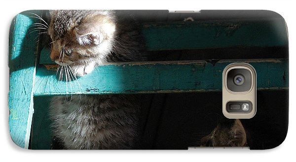 Galaxy Case featuring the photograph Two Kittens With Turquoise Chair by Doris Potter