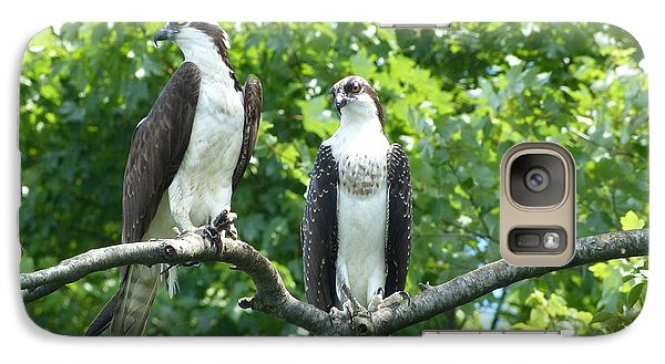 Galaxy Case featuring the photograph Two On A Limb - Osprey by Donald C Morgan