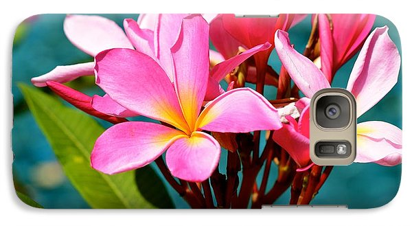 Galaxy Case featuring the photograph Two Tone Beauty by Johanne Peale