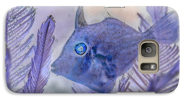 Galaxy Case featuring the photograph Under The Sea Colorful Watercolor Art #8 by Debra and Dave Vanderlaan