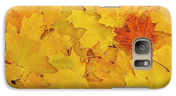 Galaxy Case featuring the photograph Understory by Tony Beck