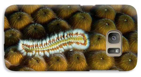 Galaxy Case featuring the photograph Undulating Bristle Worm by Jean Noren