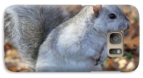 Galaxy Case featuring the photograph Unusual White And Gray Squirrel by Doris Potter