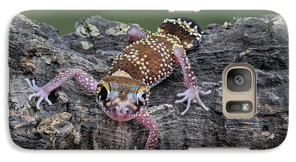 Galaxy Case featuring the photograph Up And Over - Gecko by Nikolyn McDonald