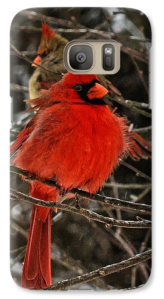Galaxy Case featuring the photograph Valentines by John Harding