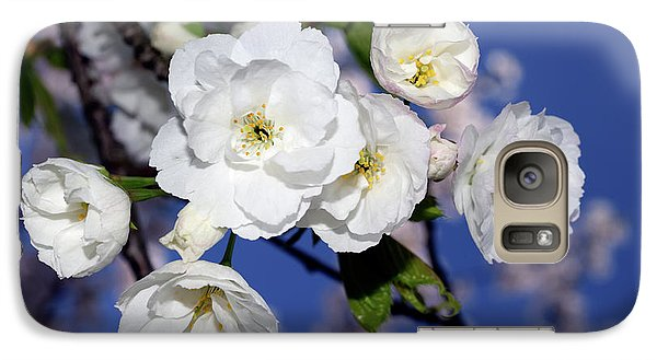 Galaxy Case featuring the photograph Vancouver 2017 Spring Time Cherry Blossoms - 1 by Terry Elniski