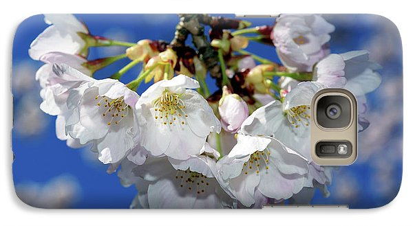 Galaxy Case featuring the photograph Vancouver 2017 Spring Time Cherry Blossoms - 11 by Terry Elniski