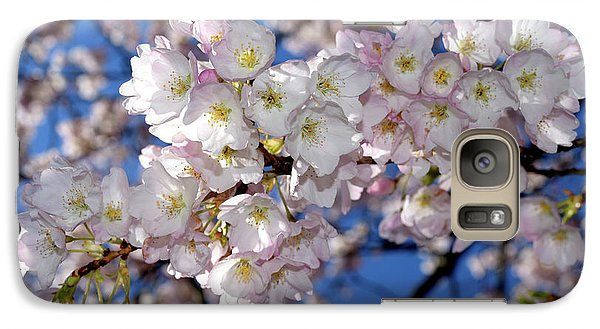 Galaxy Case featuring the photograph Vancouver 2017 Spring Time Cherry Blossoms - 12 by Terry Elniski