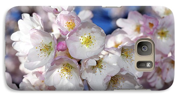 Galaxy Case featuring the photograph Vancouver 2017 Spring Time Cherry Blossoms - 13 by Terry Elniski