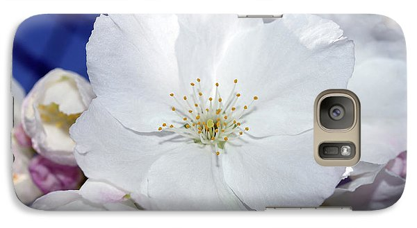 Galaxy Case featuring the photograph Vancouver 2017 Spring Time Cherry Blossoms - 2 by Terry Elniski