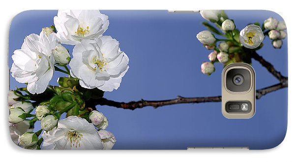 Galaxy Case featuring the photograph Vancouver 2017 Spring Time Cherry Blossoms - 4 by Terry Elniski