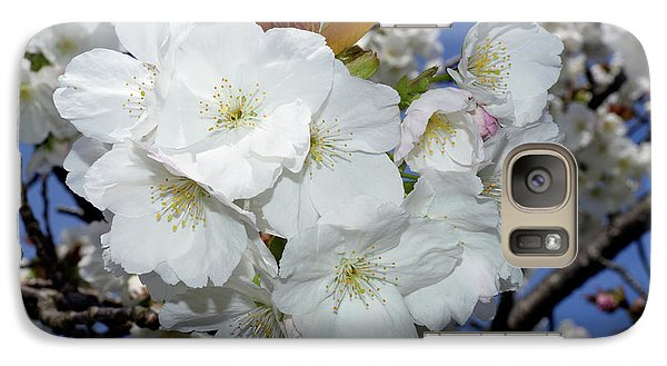 Galaxy Case featuring the photograph Vancouver 2017 Spring Time Cherry Blossoms - 5 by Terry Elniski