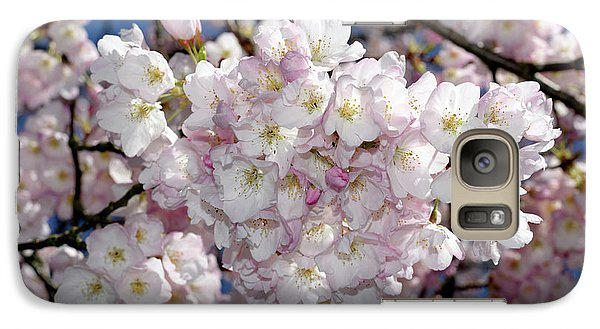 Galaxy Case featuring the photograph Vancouver 2017 Spring Time Cherry Blossoms - 6 by Terry Elniski