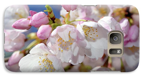 Galaxy Case featuring the photograph Vancouver 2017 Spring Time Cherry Blossoms - 7 by Terry Elniski