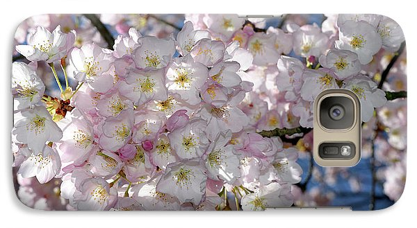 Galaxy Case featuring the photograph Vancouver 2017 Spring Time Cherry Blossoms - 8 by Terry Elniski