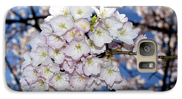Galaxy Case featuring the photograph Vancouver 2017 Spring Time Cherry Blossoms - 9 by Terry Elniski