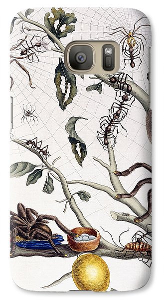 Various Arachnids From South America, 1726  Galaxy S7 Case