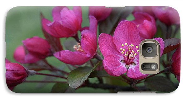 Galaxy Case featuring the photograph Vibrant Blooms by Ann Bridges