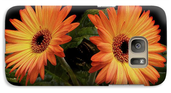 Galaxy Case featuring the photograph Vibrant Gerbera Daisies by Terence Davis