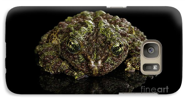 Vietnamese Mossy Frog, Theloderma Corticale Or Tonkin Bug-eyed Frog, Isolated On Black Background Galaxy S7 Case