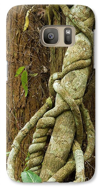Galaxy Case featuring the photograph Vine by Werner Padarin