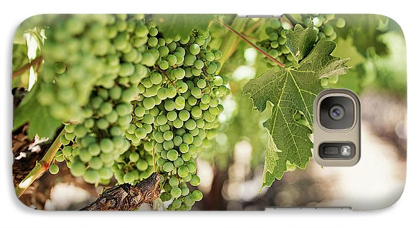 Galaxy Case featuring the photograph Wine Vineyard Of St. Helena - Grapevine Napa Valley Photography by Melanie Alexandra Price