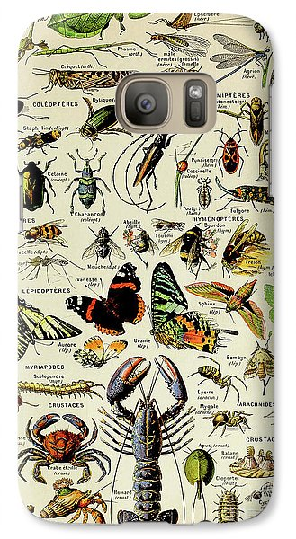 Vintage Illustration Of Various Invertebrates Galaxy S7 Case