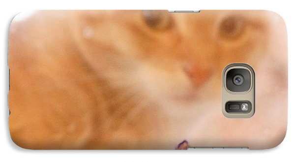 Galaxy Case featuring the digital art Violets With Cat by Jana Russon