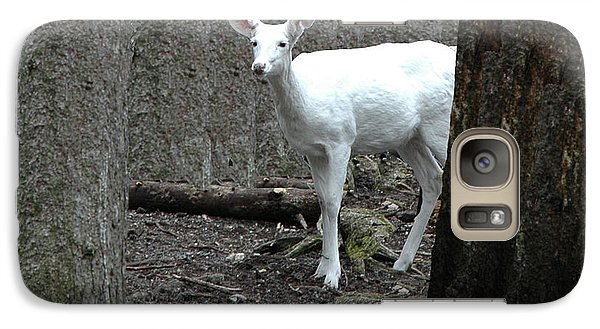 Galaxy Case featuring the photograph Vision Quest White Deer by LeeAnn McLaneGoetz McLaneGoetzStudioLLCcom