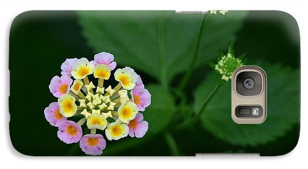 Galaxy Case featuring the photograph Waiting Their Turn by Shari Jardina