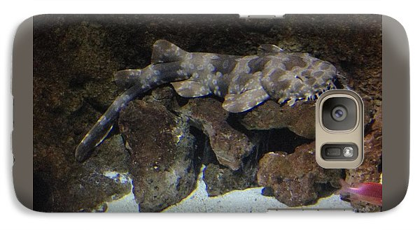 Galaxy Case featuring the photograph Waiting To Eat You - Spotted Wobbegong Shark by Richard W Linford