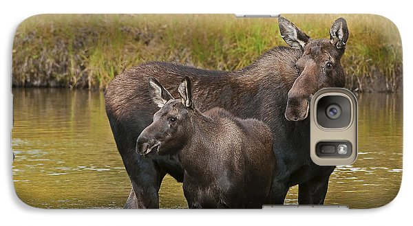 Watchful Moose Galaxy S7 Case by Gary Lengyel