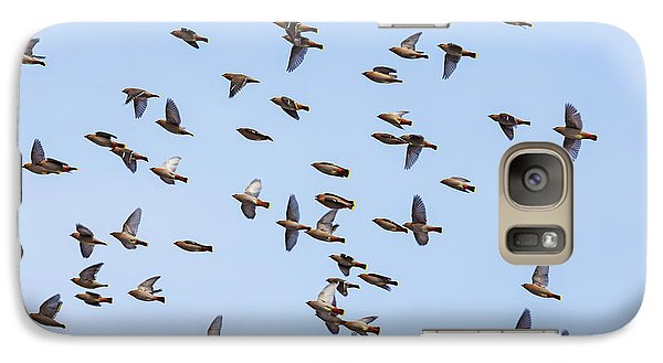 Galaxy Case featuring the photograph Waxwings by Mircea Costina Photography