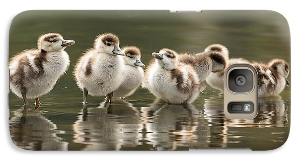 Geese Galaxy S7 Case - We Are Family - Seven Egytean Goslings In A Row by Roeselien Raimond