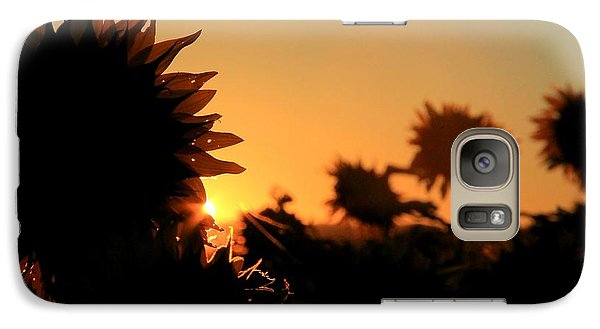 Galaxy Case featuring the photograph We Are Sunflowers by Chris Berry