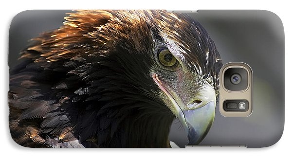 Galaxy Case featuring the photograph Wedge Tail Eagle by Bill  Robinson