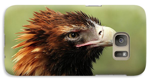 Galaxy Case featuring the photograph Wedge-tailed Eagle by Marion Cullen