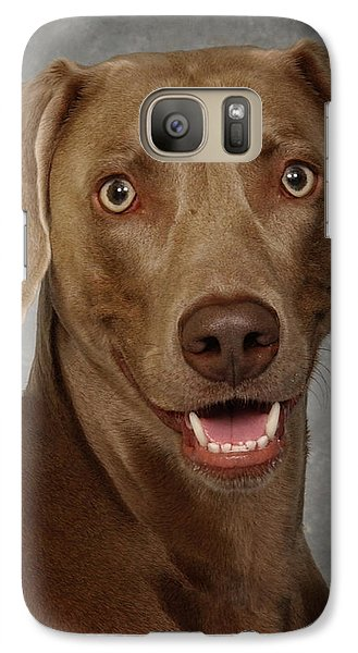 Galaxy Case featuring the photograph Weimaraner by Greg Mimbs