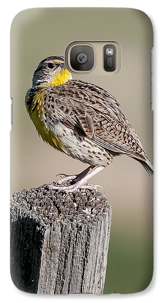 Galaxy Case featuring the photograph Western Meadowlark by Gary Lengyel