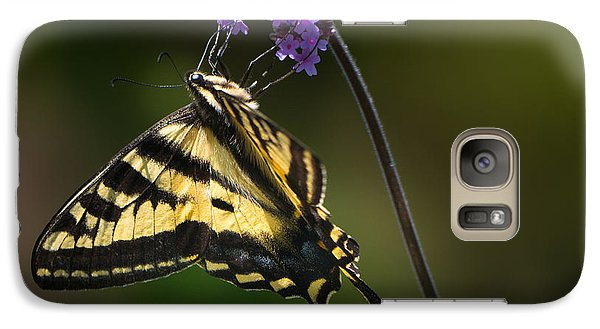 Western Tiger Swallowtail Butterfly On Purble Verbena Galaxy S7 Case
