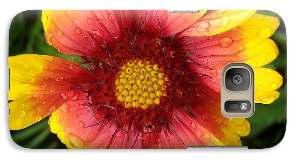 Galaxy Case featuring the photograph Wet Blanket by Elizabeth Sullivan