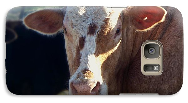 Galaxy Case featuring the photograph What You Lookin' At by Betty Northcutt