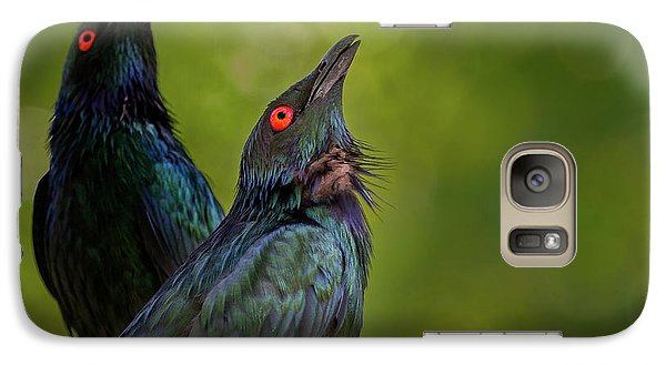 Starlings Galaxy S7 Case - What's Up There? by Jeremy Dufault