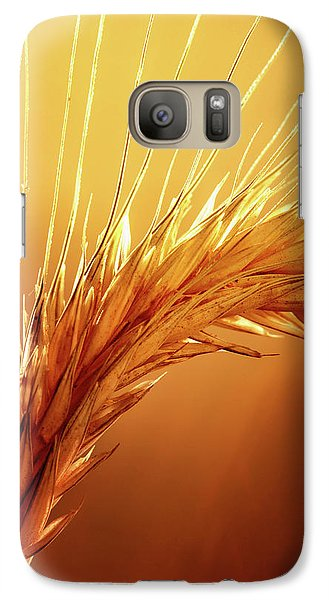 Colours Galaxy S7 Case - Wheat Close-up by Johan Swanepoel