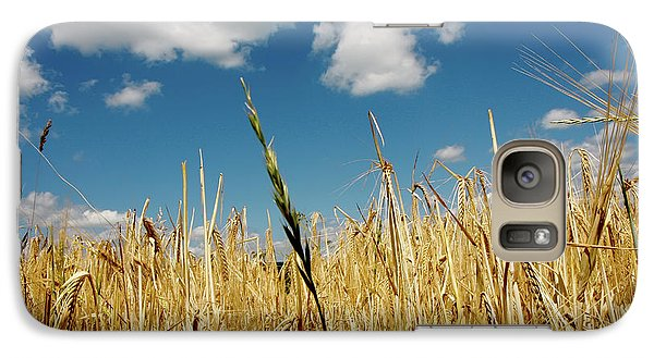 Galaxy Case featuring the photograph Wheat On The Rhine by KG Thienemann