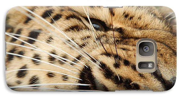 Galaxy Case featuring the photograph Whiskers  by Gary Bridger